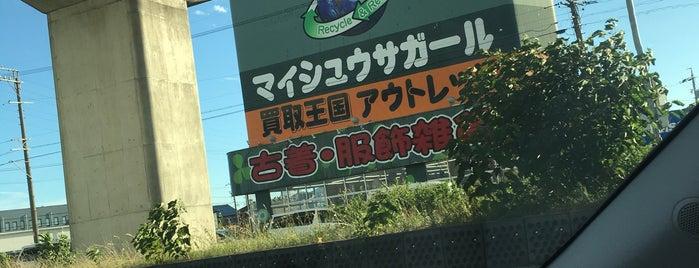 マイシュウサガール 一宮店 is one of FAVORITE PLACE.