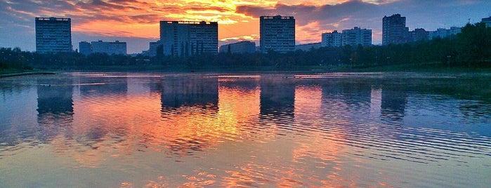 Гольяновский пруд is one of Posti che sono piaciuti a Irina.