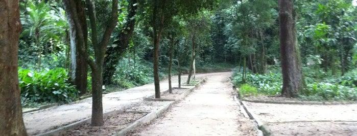 Horto Botânico Niterói is one of Locais curtidos por Marcos.