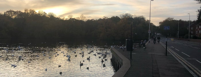 Eagle Pond is one of Lugares favoritos de Paul.