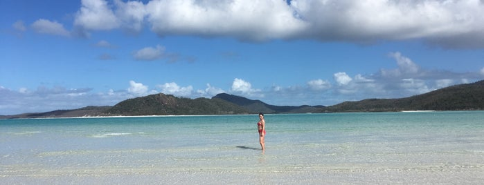 Whitsunday Island is one of Orte, die Felipe gefallen.