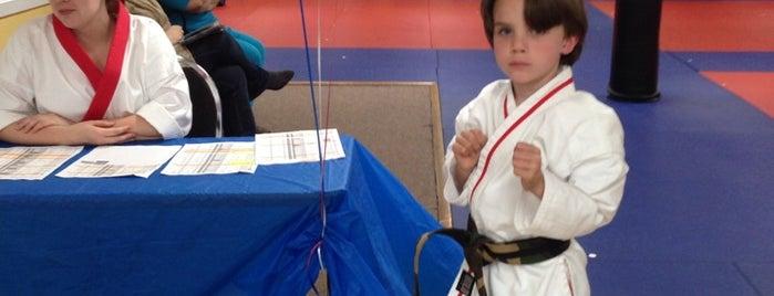 BMI Karate is one of Orte, die Lani gefallen.