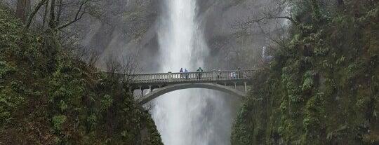 Multnomah Falls is one of Portlandia.