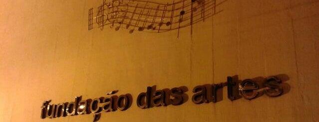 Fundação das Artes is one of สถานที่ที่ Cris ถูกใจ.