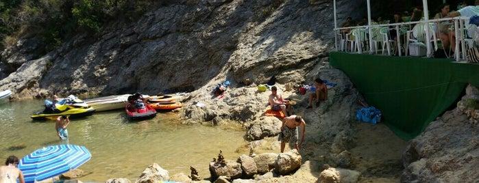 Xiringuito Cala Bona is one of Fish🐠.