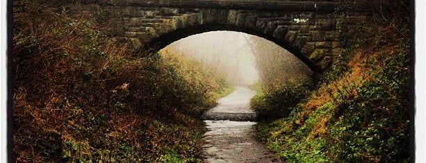 Great Northern Railway Trail is one of Dog Walking Spots in Yorkshire.