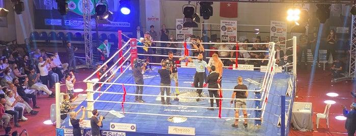 Caferağa Spor Salonu is one of İstanbul 3.