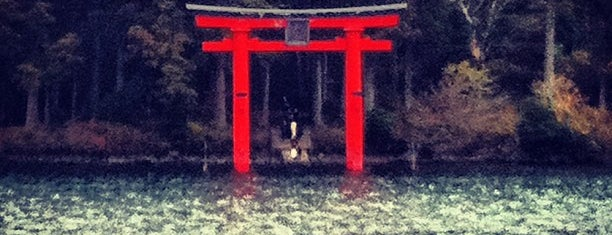 Hakone Shrine Torii of Peace is one of Orte, die Bobbie gefallen.