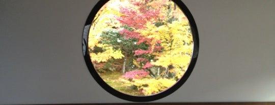 鷹峰山 源光庵 is one of Kyoto.