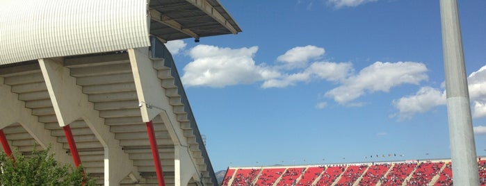 Estadi de Son Moix is one of La Liga BBVA Stadium 2013-14.