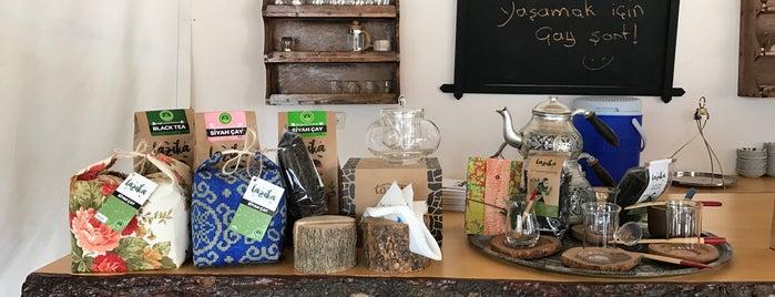 Lazika Hand Made Tea Atelier and Tea Tasting Center is one of Aylin 님이 좋아한 장소.