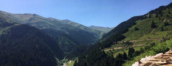 Mahura Yaylası is one of Mountain Resorts In Black Sea Region.