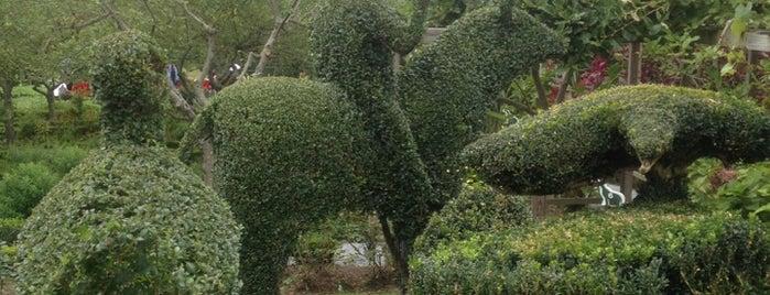 Green Animals Topiary Garden is one of Lugares favoritos de Melissa.