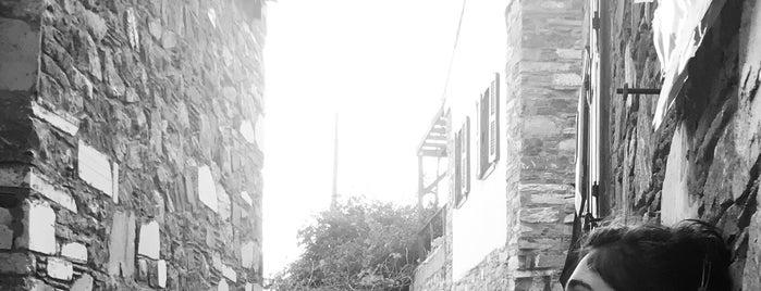 Eski Taş Evler Doğanbey  Köyü is one of Orte, die Ahmet gefallen.
