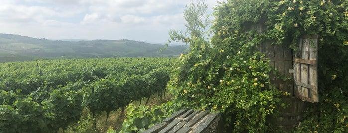 Quinta Da Avessada is one of Locais curtidos por Dandara.