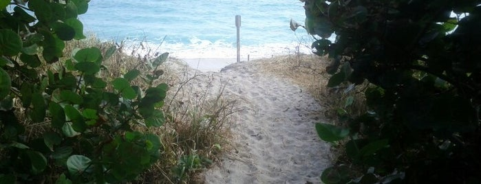 Jupiter Beach is one of Things To Do.