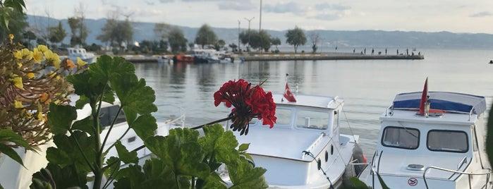 Halit Balık Restoran is one of Yeşim : понравившиеся места.