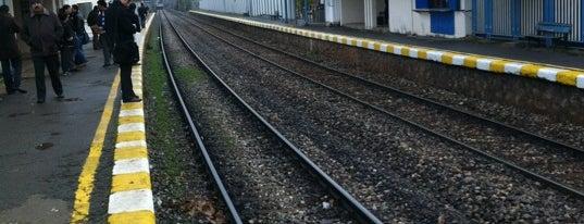 Aydıntepe Tren İstasyonu is one of Tren İstasyonları - Pendik.