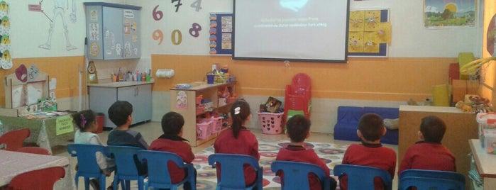 Kasımpaşa ilköğretim okulu is one of ..