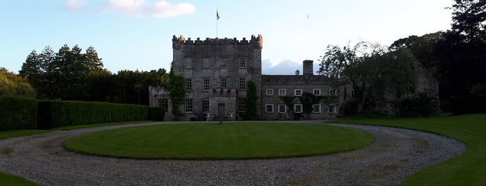 Huntington Castle is one of In Dublin's Fair City (& Beyond).