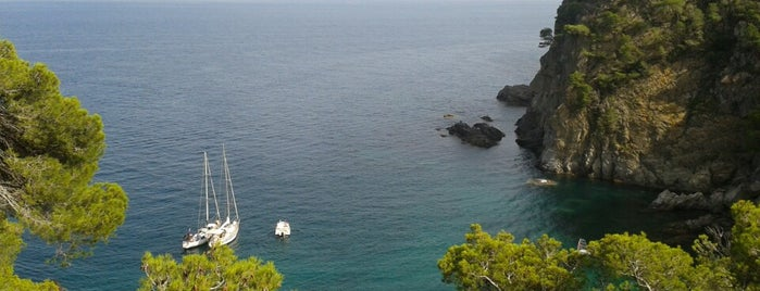 Cala Pedrosa is one of Playas de España: Cataluña.