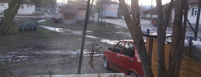 Terziler is one of Kütahya | Aslanapa İlçesi Köyleri.