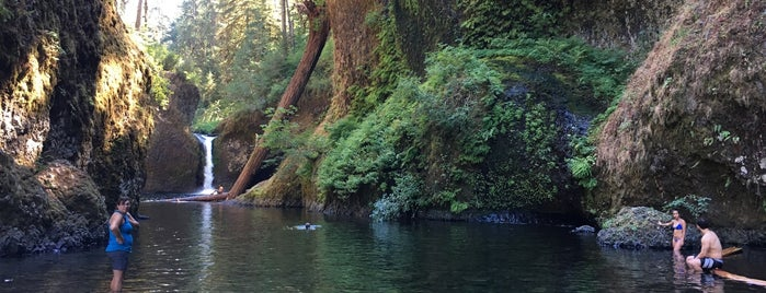 Punchbowl Falls is one of Exploregon.