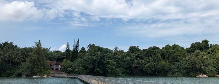 Viewing Jetty | Chek Jawa Wetlands is one of Tempat yang Disimpan Mark.
