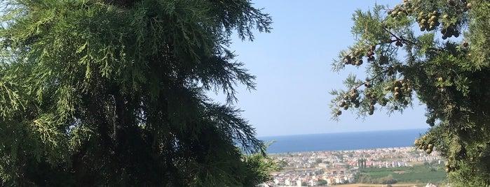 Bayrak Tepe Kahvaltı Evi is one of Posti che sono piaciuti a Zafersyk.