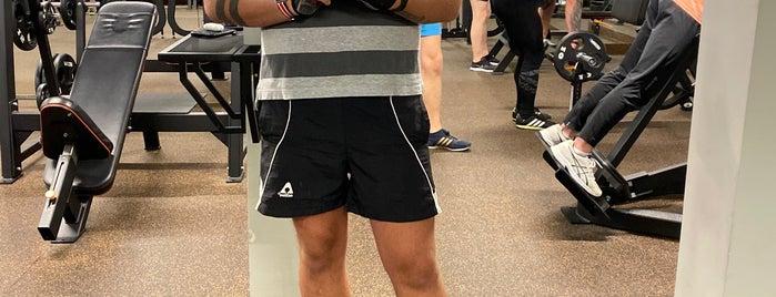 Spirit Fitness is one of Yury : понравившиеся места.
