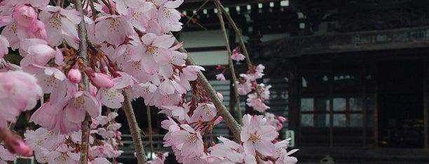 梅岩寺 is one of Masahiro'nun Beğendiği Mekanlar.
