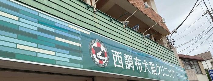 西調布犬猫クリニック is one of Tempat yang Disukai モリチャン.