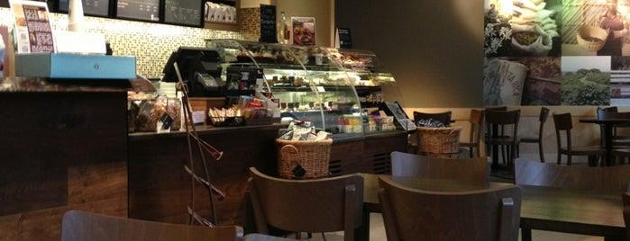 Starbucks is one of Orte, die Brett gefallen.