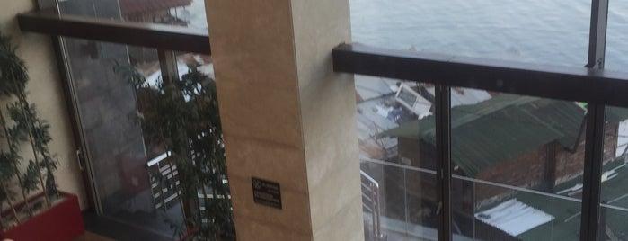 DoubleTree by Hilton Trabzon is one of สถานที่ที่ Emrah ถูกใจ.