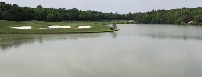 Golf Club Check-In