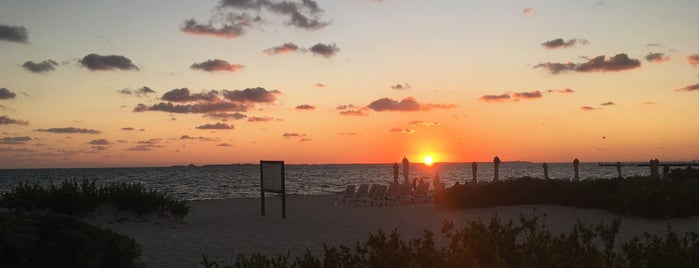 Beach at the Secrets Playa Mujeres Golf & Spa Resort is one of Posti che sono piaciuti a Jesús Ernesto.