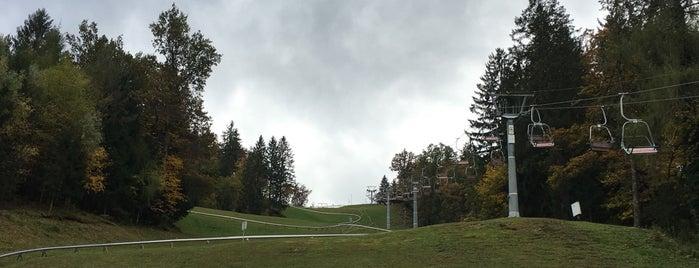 Pustolovski Park Bled (Adventure Park Bled) is one of Locais curtidos por Álvaro.