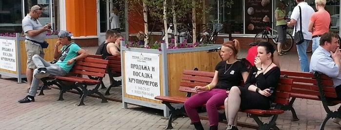 Выставка эротической индустрии ES Expo is one of สถานที่ที่บันทึกไว้ของ ✨💗Валентина В 💋💗✨.