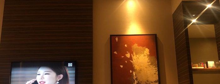Hyatt Regency Manila, City Of Dreams is one of Jaymee's Liked Places.