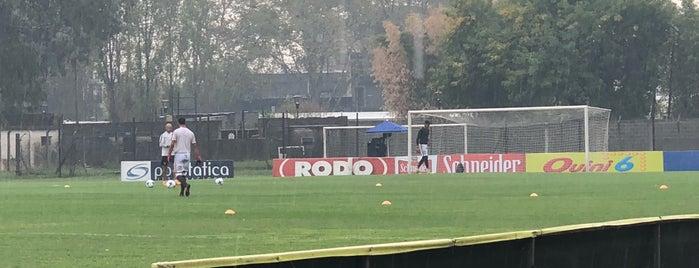 Estadio Alfredo Ramos is one of アルゼンチン.