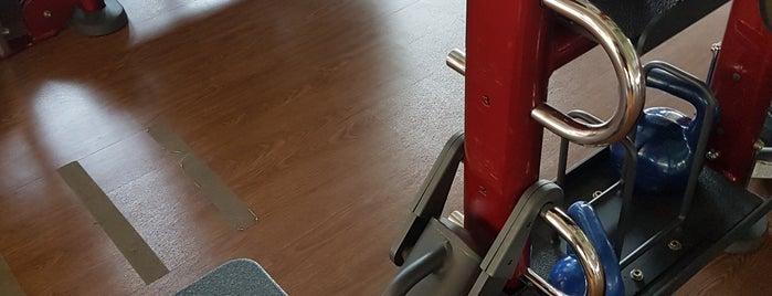 Flex Fitness Center is one of Posti che sono piaciuti a Rodrigo.
