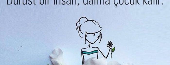 VakıfBank is one of Yunus'un Beğendiği Mekanlar.