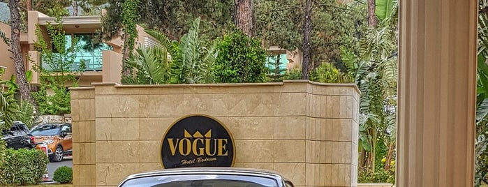 Vogue Hotel Vip Tranfer & Yatcılık is one of Locais salvos de Ates.