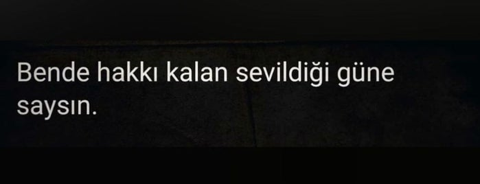 Altınkuş is one of Tempat yang Disukai TARIK.