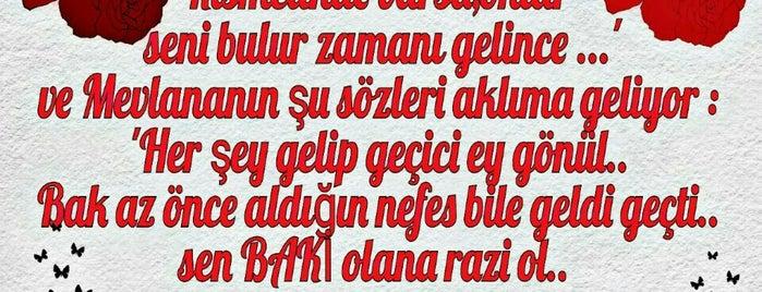 Optik Store Hatay is one of ...