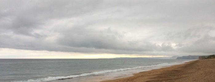 Cogden Beach is one of สถานที่ที่ Wayne ถูกใจ.