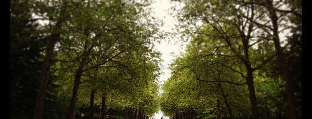 Warandepark / Parc de Bruxelles is one of Brussels Essentials.