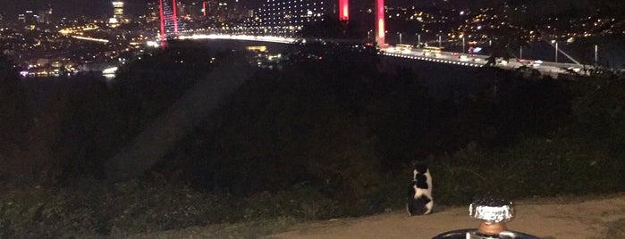 Nakkaştepe Millet Parkı is one of Posti che sono piaciuti a Zeynep.