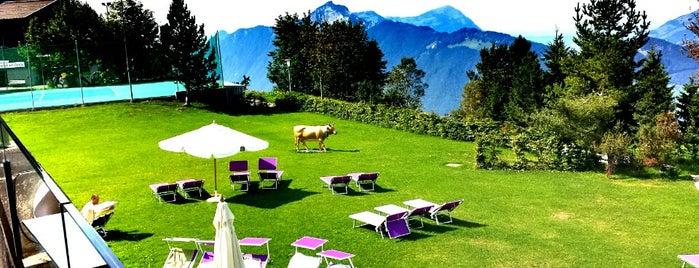 Seminar- und Wellnesshotel Stoos is one of Alpen-Tips.