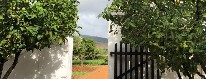 Babylonstoren is one of So much to see!.